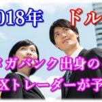 2018年ドル円の注目ポイント|110円割れて円高トレンドが続くのか?